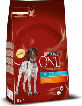 Purina ONE Junior Runsaasti Kanaa, 3kg - Purina ONE - 7613033274510 - 1